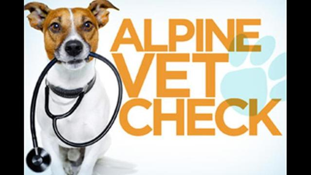 Vet Check - December 13th, 2013