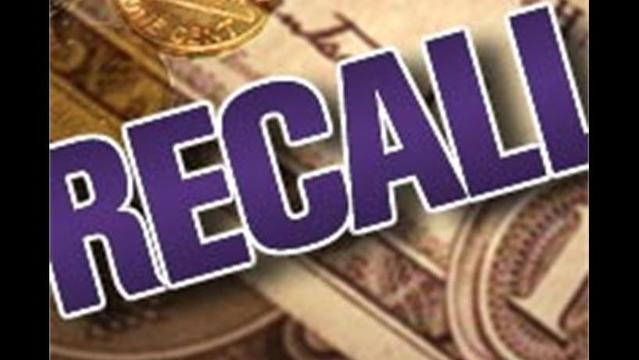 Recall:  Troy-Built Electrical Leaf blowers