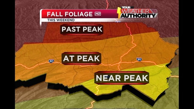 This Weekend's Fall Foliage Report 10/11-13