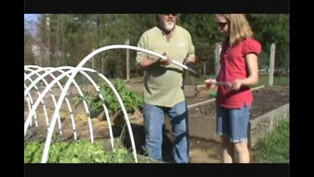 How to build a hoop garden and eat greens all winter